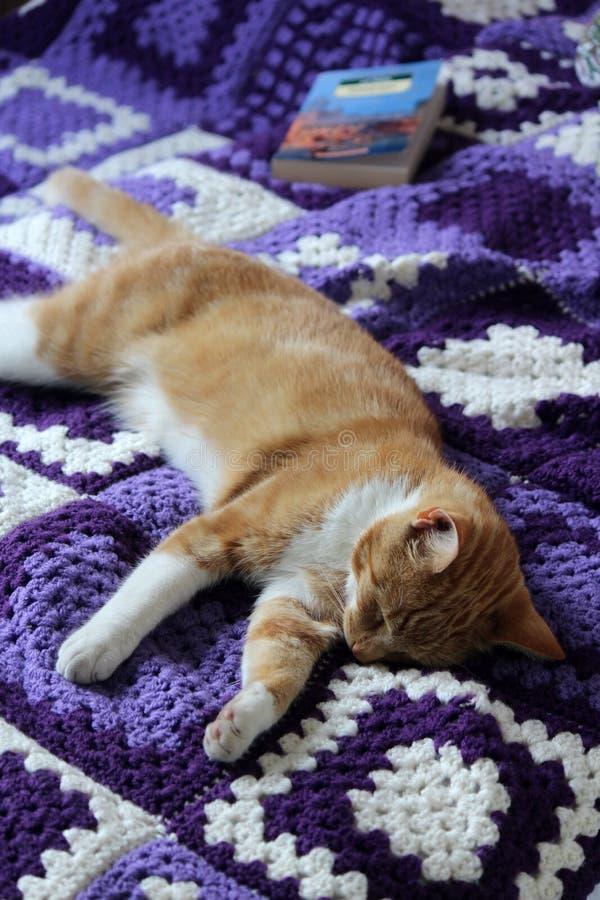 Crochet Cat Coasters | 900x600