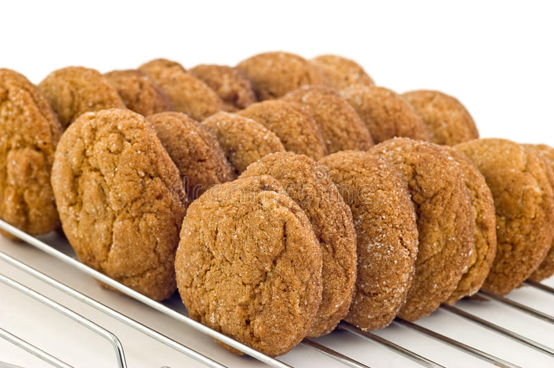 Download Ginger cookies stock photo. Image of baking, snack, rack - 22181550