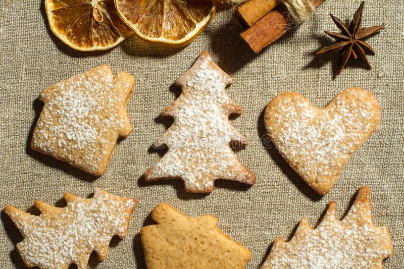 Ginger cookies and dry spices stock images