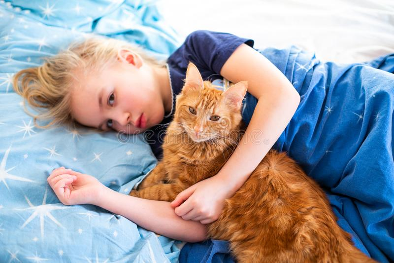 Ginger fluffy cat with little sleeping girl on the blue bed royalty free stock image