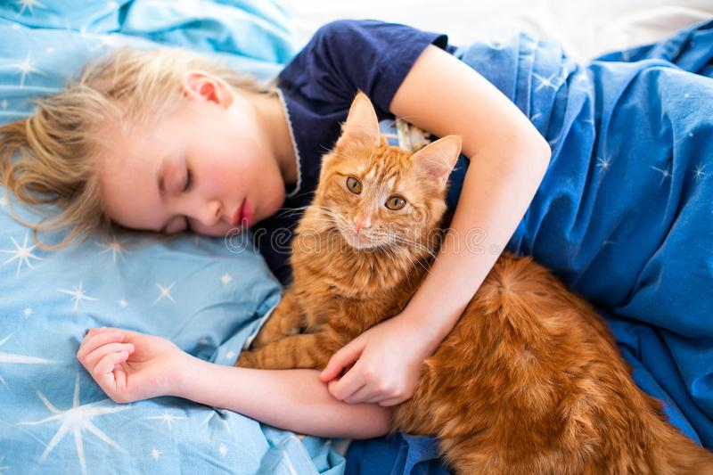 Ginger fluffy cat with little sleeping girl on the blue bed royalty free stock photos