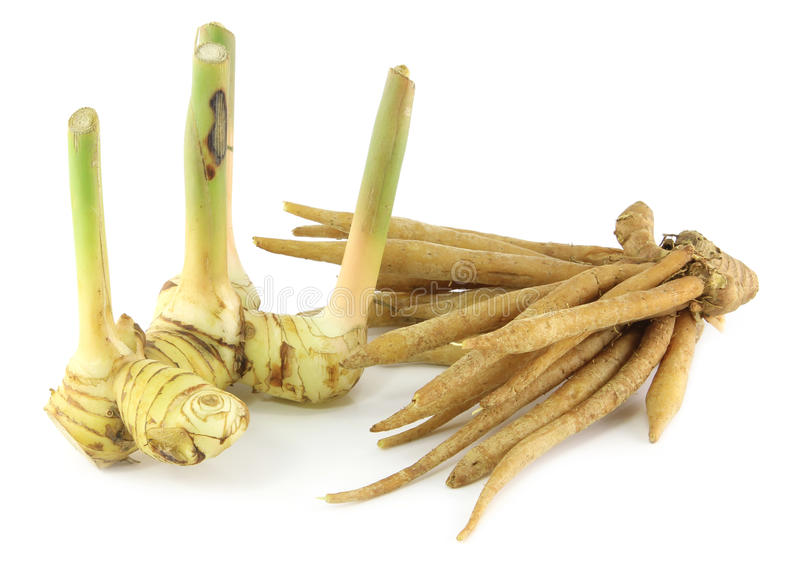 Download Ginger and galingale stock photo. Image of asian, herbal - 25512338