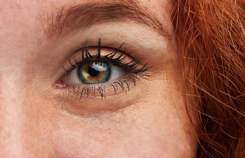 Ginger girl with perfect appearance and eyes posing to the camera. Natural beauty concept. cropped photo royalty free stock images