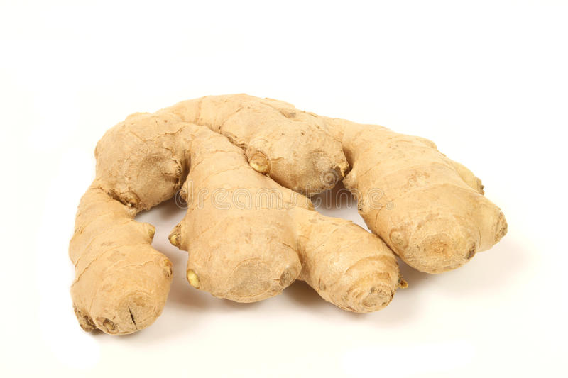Ginger isolated royalty free stock photography