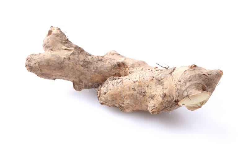 Ginger Isolated On White Background Stock Image