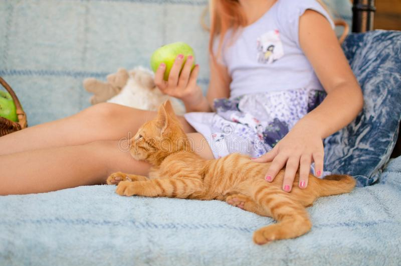 Ginger kitten lies near the girl on the garden swing. The girl strokes her pet. Little blonde caucasian girl with a red cat.  stock images