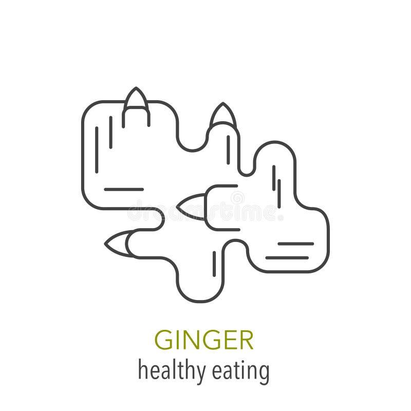 ginger Linha ícone do vetor ilustração do vetor