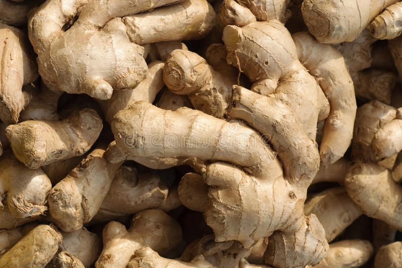 Download Ginger Root Royalty Free Stock Images - Image: 18792449