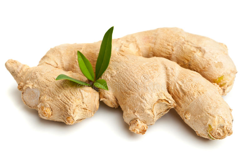 Download Ginger root stock photo. Image of condiment, flavor, brown - 26514782