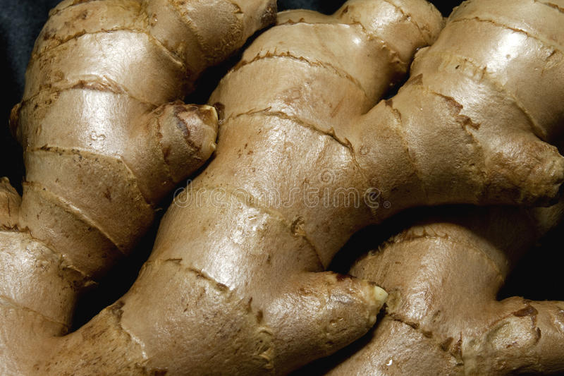 Ginger Root Closeup royalty free stock photo