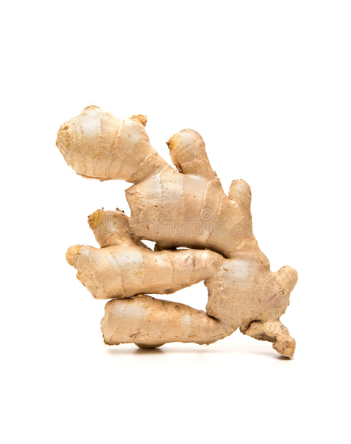 Ginger root isolated on white background stock images