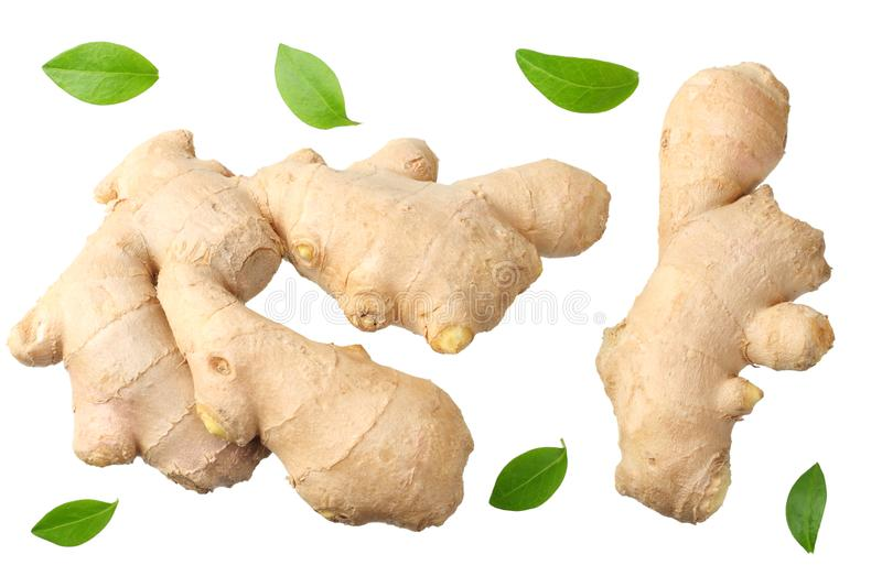 Ginger root isolated on white background top view royalty free stock photos