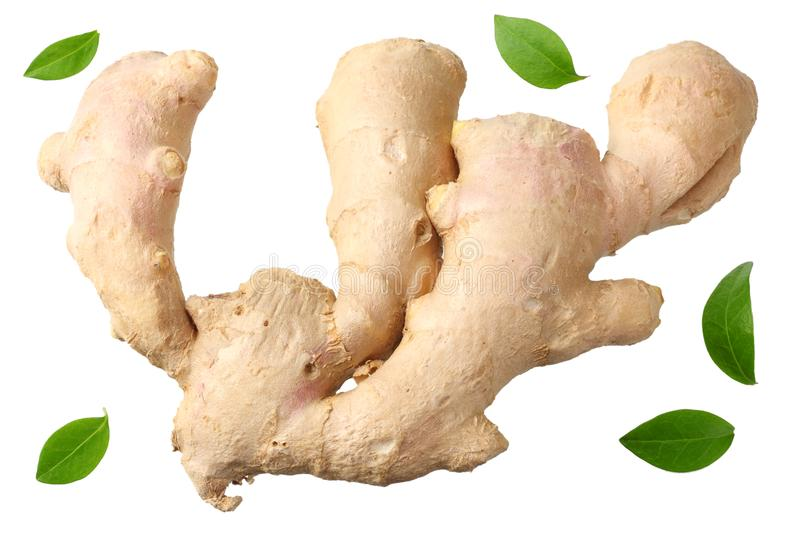 Ginger root isolated on white background top view stock photos
