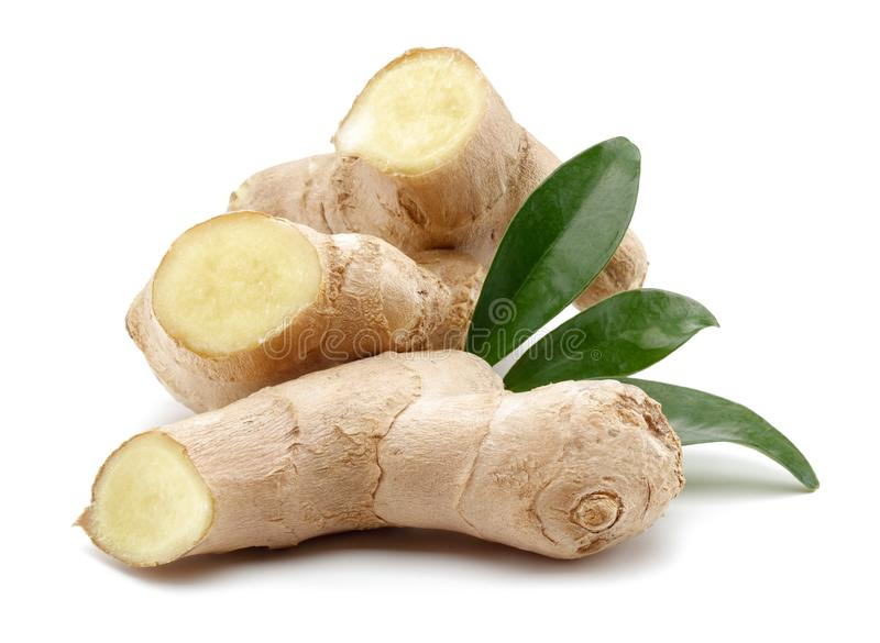 Ginger root with leaves on white background stock image