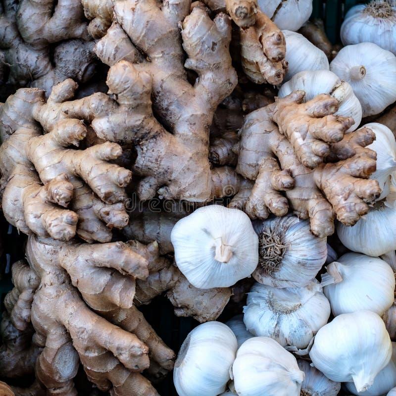 Ginger Root och vitlökkulor arkivbilder