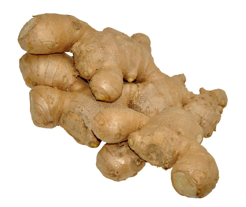 Ginger Root On White stock photos