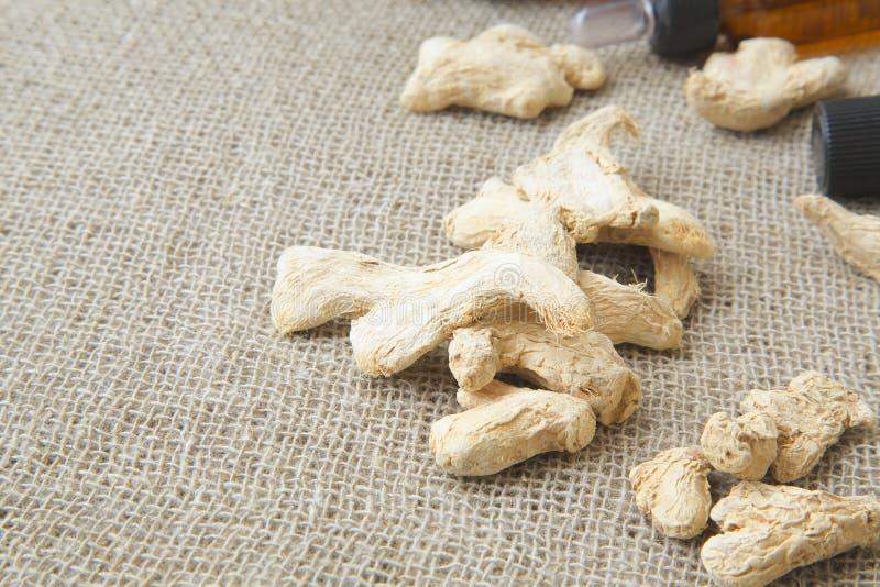 Ginger Roots image libre de droits