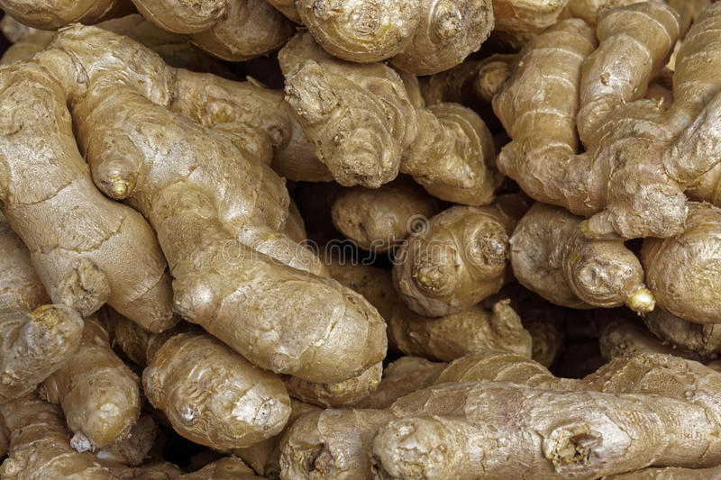 Ginger Roots photo stock