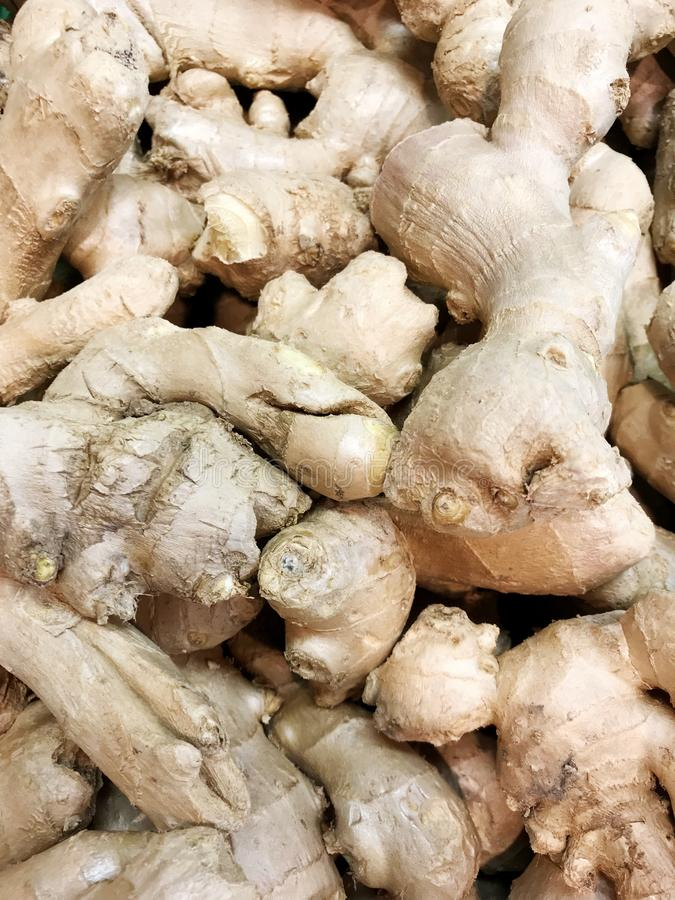 Ginger roots royalty free stock photo