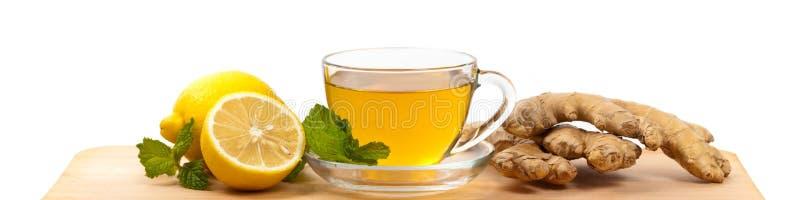 Ginger Tea royaltyfri foto