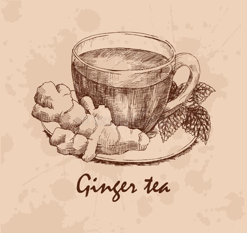Ginger Tea lizenzfreie abbildung
