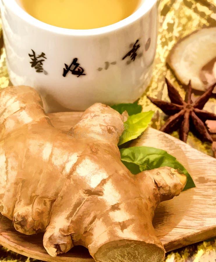 Ginger Tea Cup Represent Refresh würzte und Getränk stockfotos