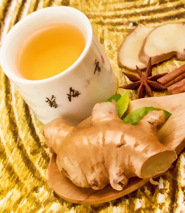 Ginger Tea Cup Represents Refresh würzte und Getränke lizenzfreie stockfotografie