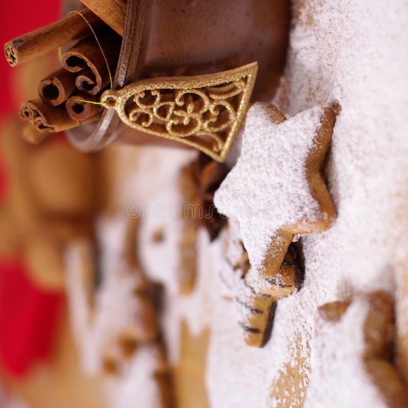 gingerbread циннамона стоковое фото