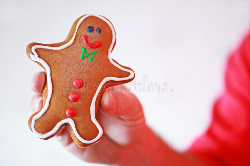 Download Gingerbread boy cookie stock image. Image of frosting - 12286313