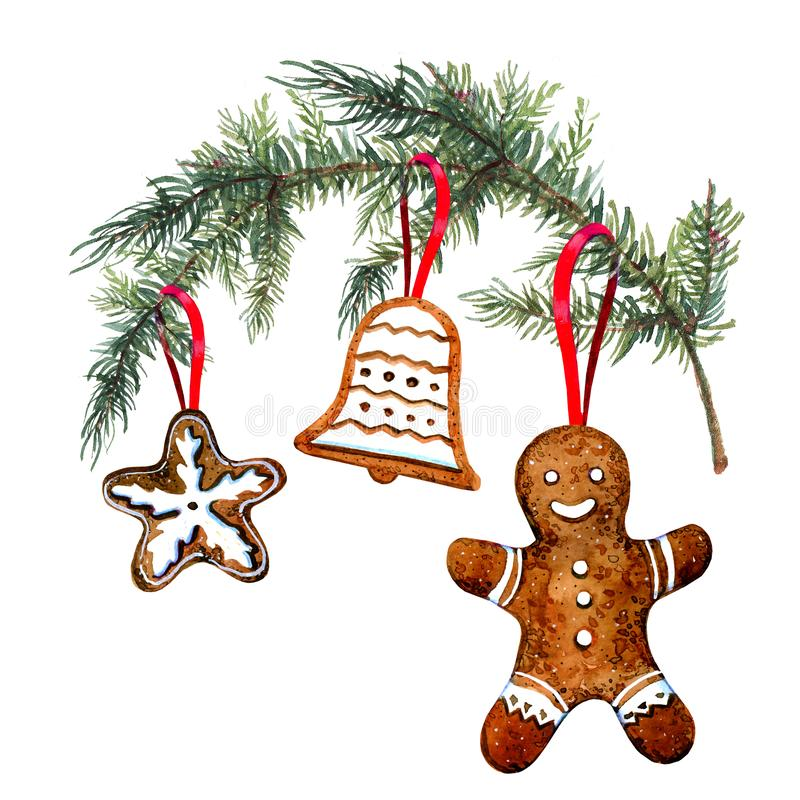 Gingerbread cookie figures hanging on christmass tree branch. Hand drawn watercolor illustration. On white background vector illustration