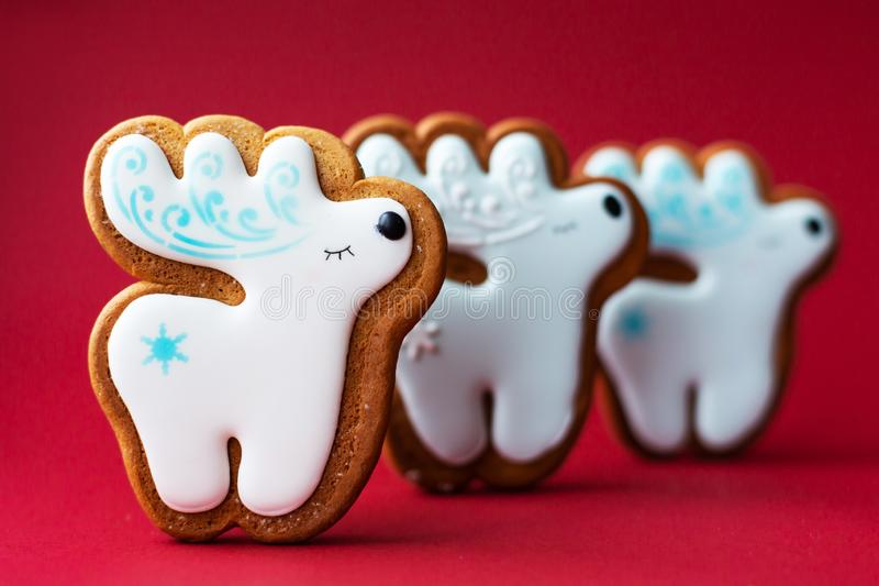 Gingerbread cookie of little cute deer on red background. Traditional Christmas food. Christmas and New Year holiday concept stock images