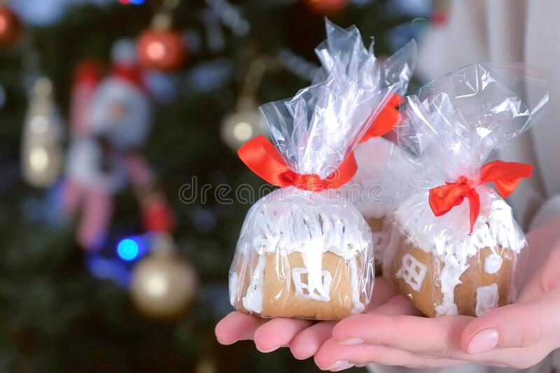 Gingerbread houses in package for Christmas on woman`s hands on tree background. stock photography
