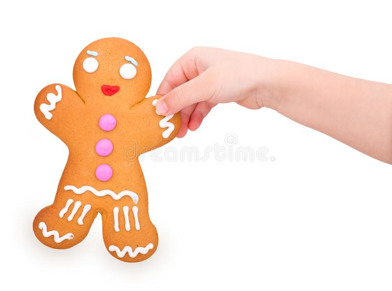Gingerbread man in a child`s hand. Isolated on white background stock image