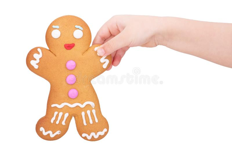 Gingerbread man in a child`s hand. Isolated on white background stock photography