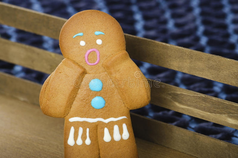 Gingerbread man. Story tale stock photo