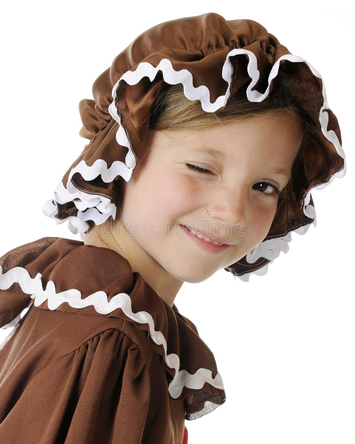 Gingerbread Wink royalty free stock photo