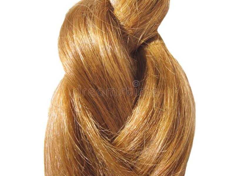 Gingery-farbiges Haar lizenzfreie stockfotos