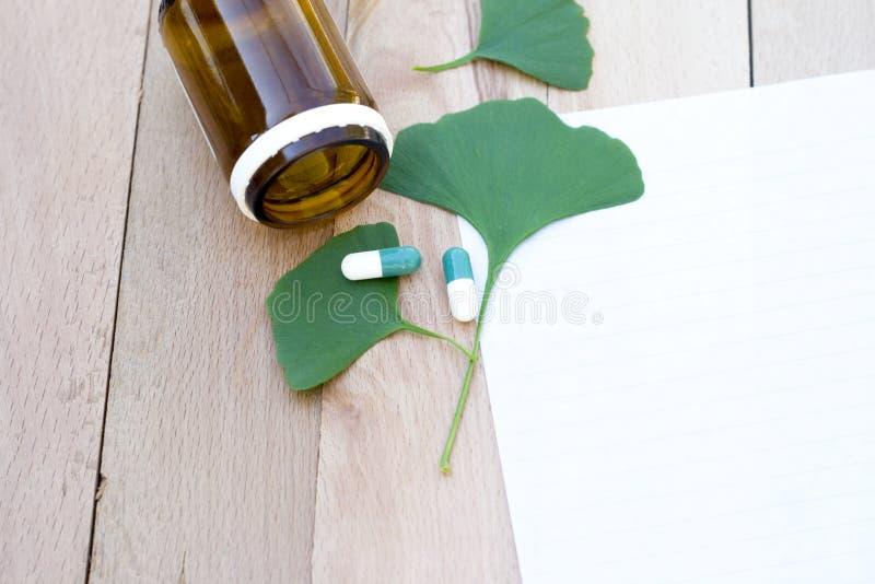 Ginkgo biloba. Health care,medicine royalty free stock photography