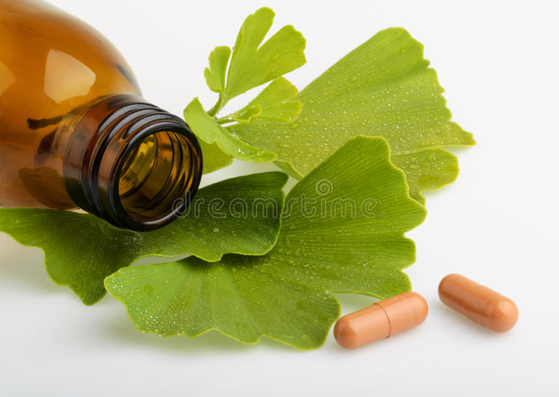 Ginkgo biloba leaves and medicine bottles with pills royalty free stock images