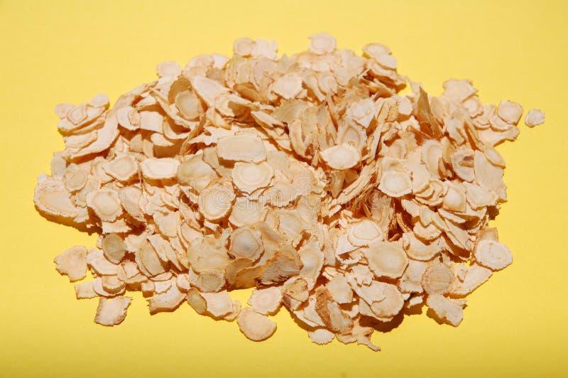 Ginseng affettato immagine stock