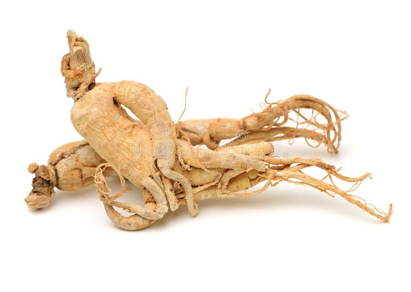 Ginseng coréen sec photos stock