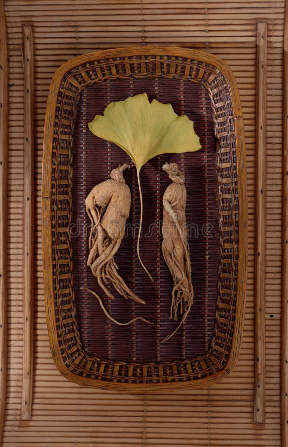 Ginseng and Ginkgo. Ginseng, the energy root with Ginkgo leaf royalty free stock photo
