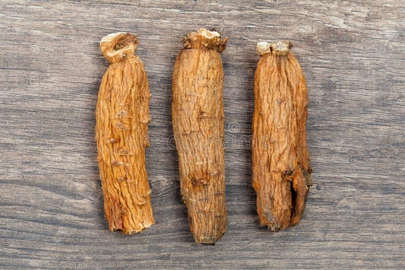 Ginseng sur la table en bois photographie stock libre de droits