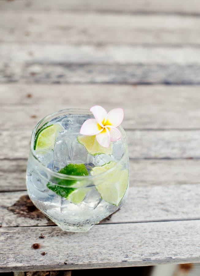 Ginuppiggningsmedel i exponeringsglas med iskuber och limefruktskivan royaltyfria bilder