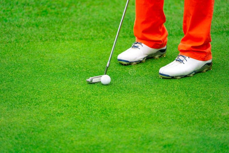 Giocatore di golf che mette palla da golf per forare sul campo verde nel campo da golf fotografie stock