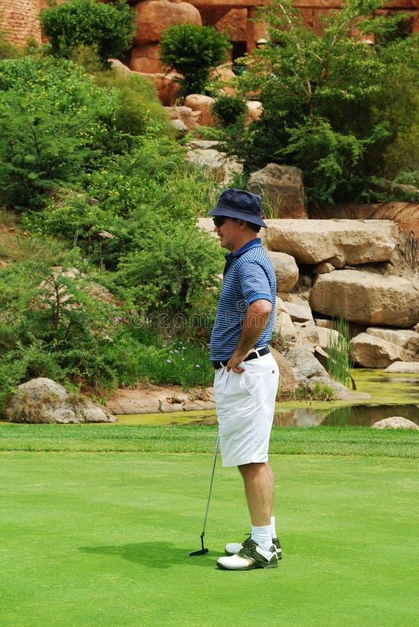 Giocatore di golf sul verde. fotografia stock