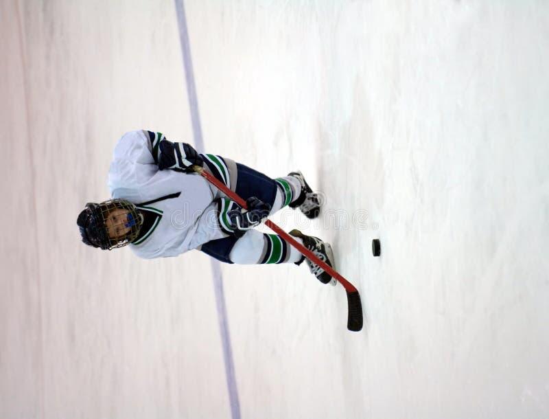 Giocatore di hokey del ghiaccio immagini stock libere da diritti