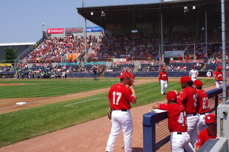 Giocatori di baseball dei canadesi di Vancouver immagini stock