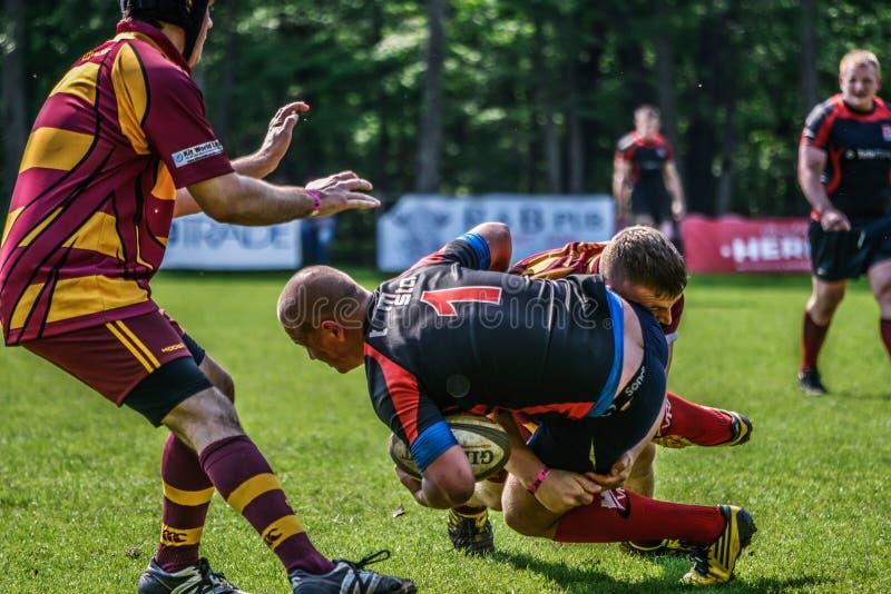 Giocatori di rugby che cadono immagine stock libera da diritti