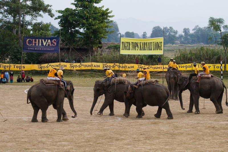 Giocatori durante il polo degli elefanti, Nepal di polo degli elefanti fotografie stock
